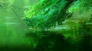 Beautiful Anime - Nature [AMV]