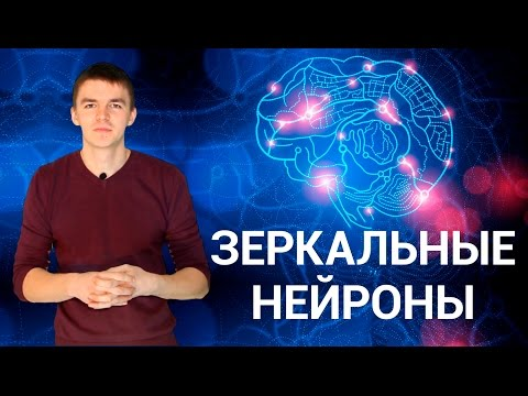 Причины поведения. Секреты зеркальных нейронов. ПОЗНАНИЕ #3