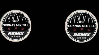 MR SOKNAS MIX Zill bek sloy tt hz 2k18 kop