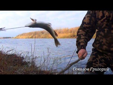 рыбалка на бревно