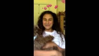 Wafia - I'm Good [Vertical Video]