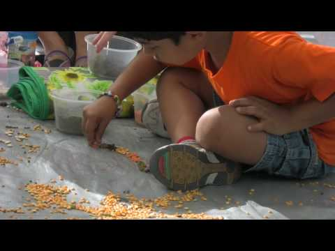 Creative Play for Kids Part 3 - Art and Drama Therapy for Children - Coping with Trauma