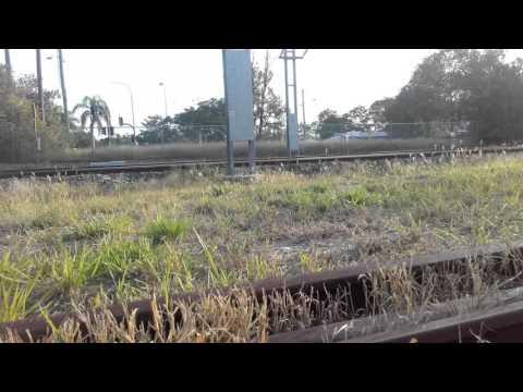 Northbound Spirit of Queensland passing narangba station