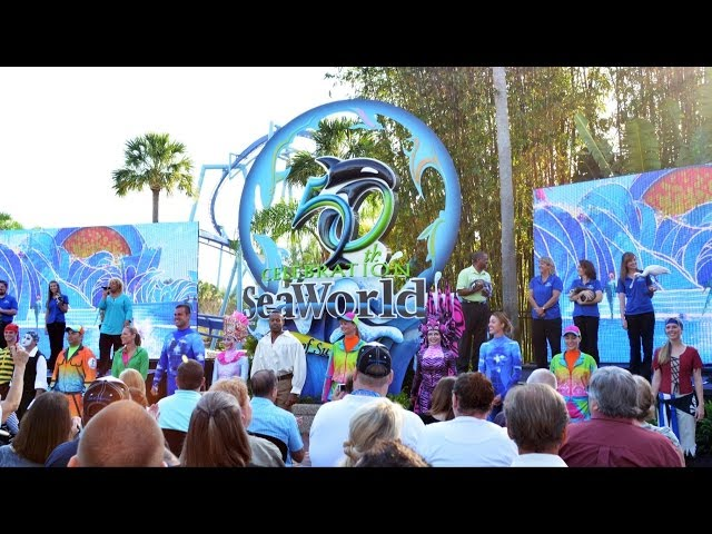 "SeaWorld's 50th Anniversary Celebration - ""Sea of Surprises"" Orlando Kick-Off w/ Animals, Performers"