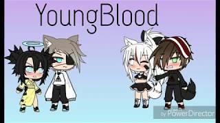 YoungBlood GLMV