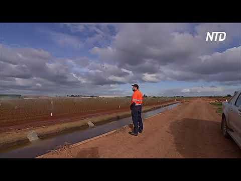 Фермеры Австралии хотят использовать канализационные воды для полива