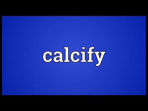 Header of calcify