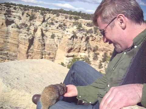 Grand Canyon - $100 Fine - Squirrel Cheeks