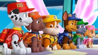 PAW Patrol Mighty Pups - All Pups Mighty Rescue Vehicles Transformations - Fun Pet Kids Games