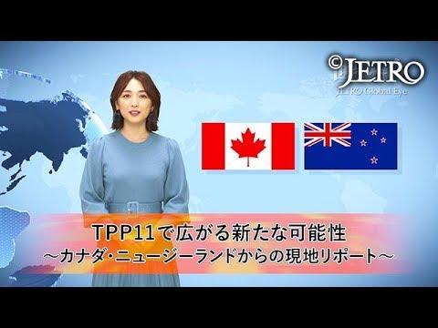 【環太平洋パートナーシップ協定】TPP11で広がる新たな可能性 ‐カナダ・ニュージーランドからの/2016 …他関連動画