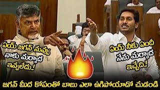 See How Chandrababu Showed His Anger On CM YS Jagan || Chandrababu VS YS Jagan || NSE