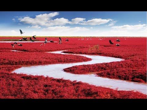 20 невероятных мест на планете