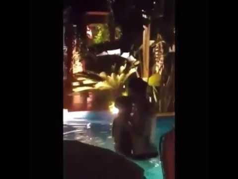 Kismetse Olur - Nur ve Batu Havuzda öpüştüler!!