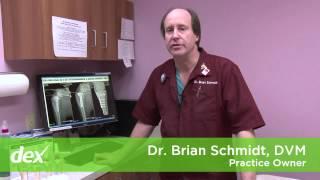 Dwight-Pine Bluff-Lakewood Animal Hospitals, LLC & Skinner A