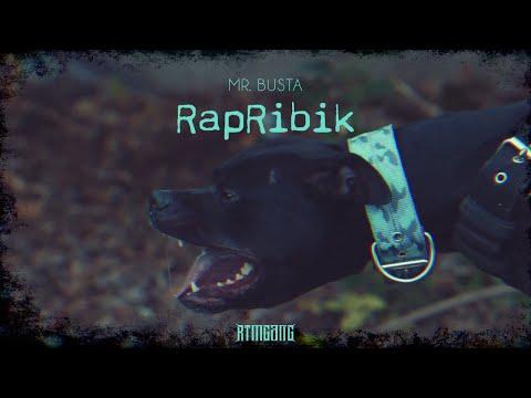Mr.Busta - RapRibik  ( #streetvideo 2 )