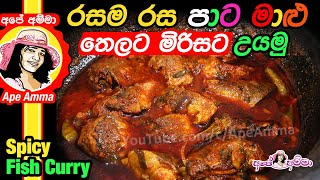 Spicy 'colored' fish curry by Apé Amma