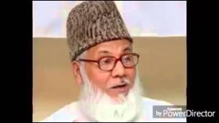 Islamic gan