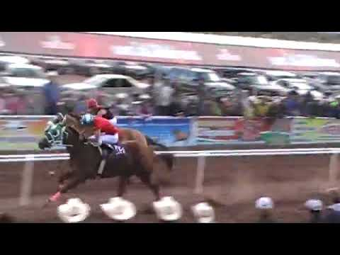 FINAL FUTURITY EXPOGAN 2009