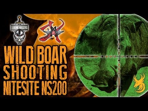 EXTREME Hog Hunting - Shooting Wild Boar with the NiteSite NS200