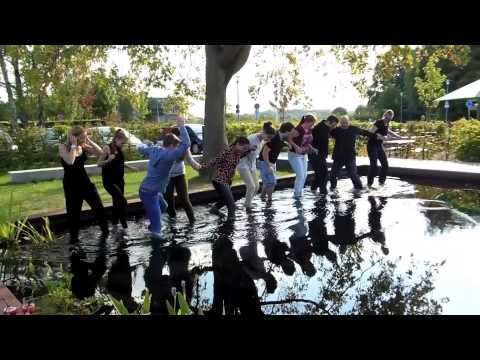 Laarnis Cold Water Challenge