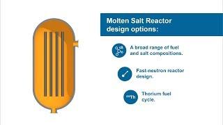 Molten Salt Reactor Fundamentals
