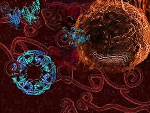 Illuminati Ebola Virus to Kill Millions 2015 Exposed NWO Warning(Redsilverj)