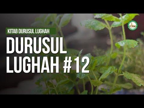 Durusul Lughah - Ustadz Muhammad Hafidz Anshari, Lc