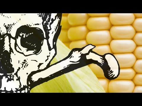 Monsanto and their close ties to the government&#8211...