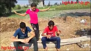 غلاسة مصرية مضحك