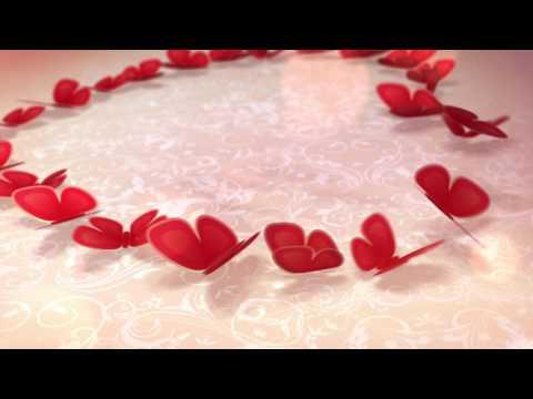 Футаж Бабочки рисуют сердце