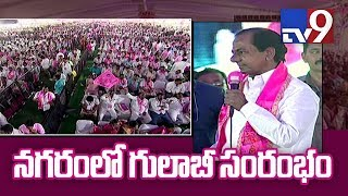 Hyderabad turns pink with TRS plenary celebrations