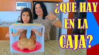 ADIVINA QUE HAY EN LA CAJA 2 | AnaNana Toys