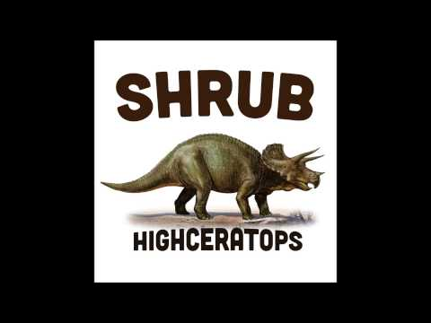 Shrub - Coconut Tree