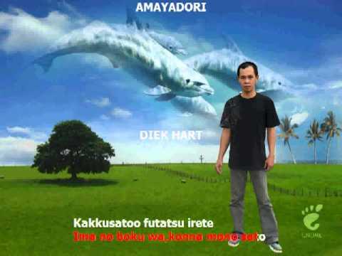 Amayadori Karaoke