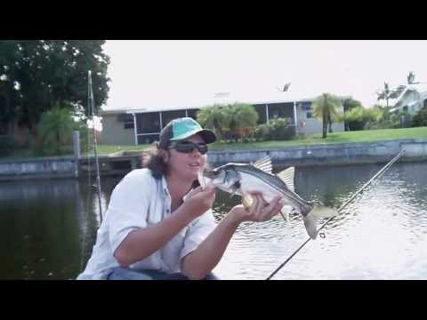 Canal Snook Fishing (Fort Lauderdale, Florida)