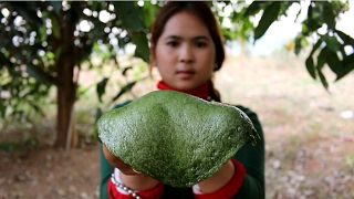 How to create a natural plant into jelly delicious - Beautiful Girl Cooking - Village Food Factory