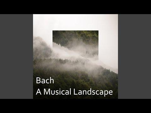J.S. Bach: Brandenburg Concerto No.3 In G, BWV 1048 - 2. Adagio