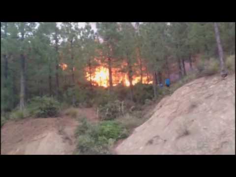 حريق جبل مولاي عبد القادر بجماعة زومي (غابة إيزارن)