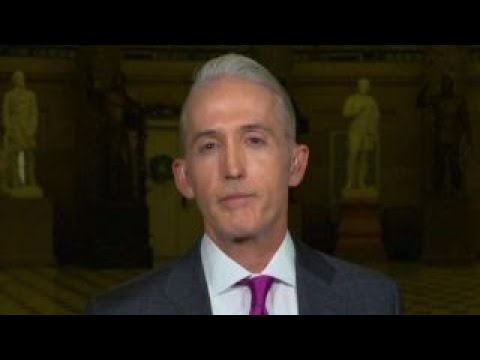 Gowdy on FBI agent removed by Mueller, Trump Jr. testimony