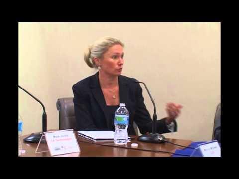 FEF Health IT Challenges Qlik June 2015