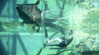 5 Things to Do in Darwin NT Australia