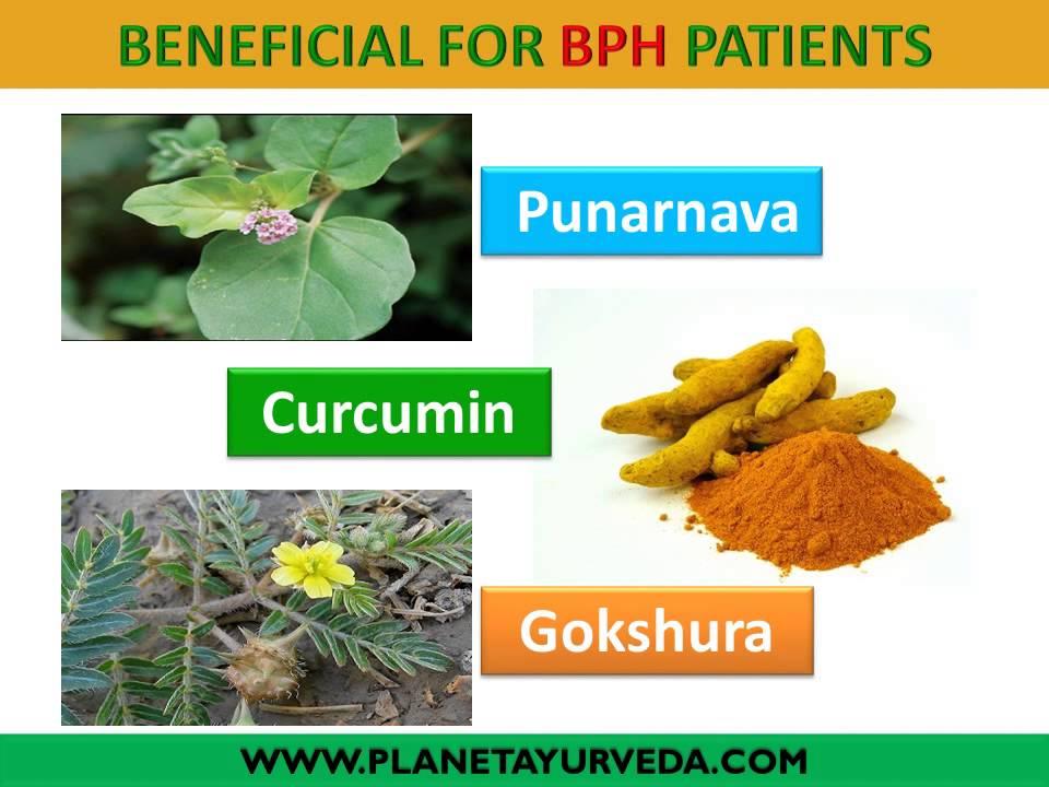 BPH enlarged prostate gland ayurvedic treatment - YouTube
