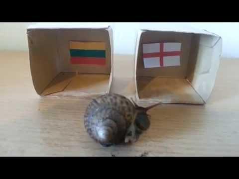 Lithuania v England - UEFA EURO 2016 QUALIFIERS PREDICTION