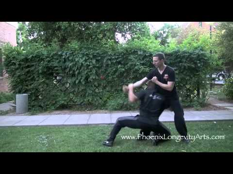 Kung Fu Real Throws:  Internal Fighting, BA GUA! Image 1