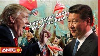 Người Hoa tại Mỹ: Nạn nhân mới của cuộc chiến thương mại Mỹ - Trung? | Tiêu điểm quốc tế | ANTG