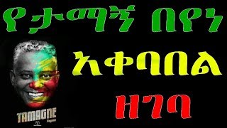 Ethiopia : የታማኝ በየነ  አቀባበል  ዘገባ