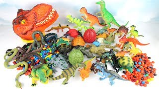 T Rex Big Head Magic. Learn Dinosaurs with Eggs Animals M&M Superheroes Learning dinosaur Toys 공룡