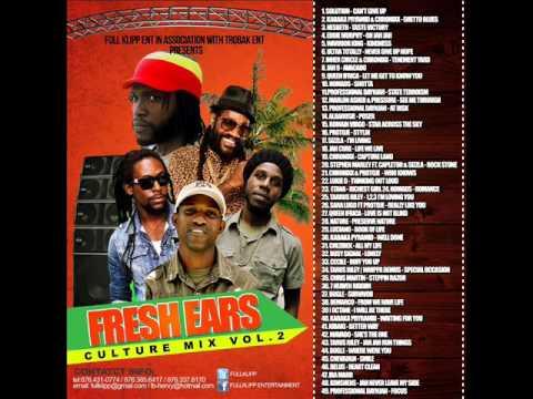 2015 REGGAE  JAMAICA BEST MIX  DJ MILO CHAMZ