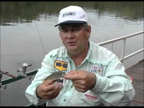 Pesca Dinâmica - Muitos lambaris no Rio Iguaçu na região de Foz do Jordão - PR - Parte - 1