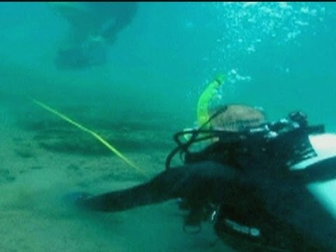 DISCOVERY: Have explorers found Sir Francis Drake's body?